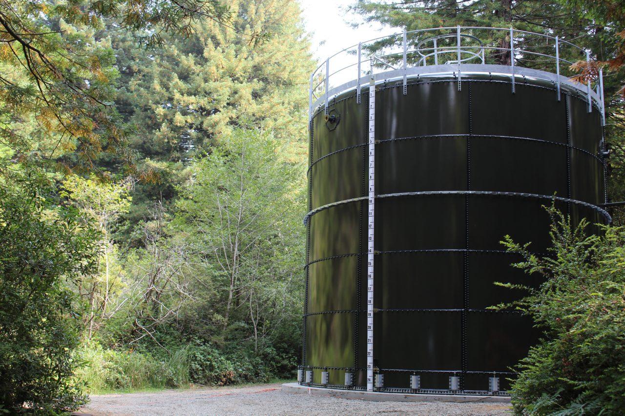 Northern California Redwoods 2018 | California Aquastore